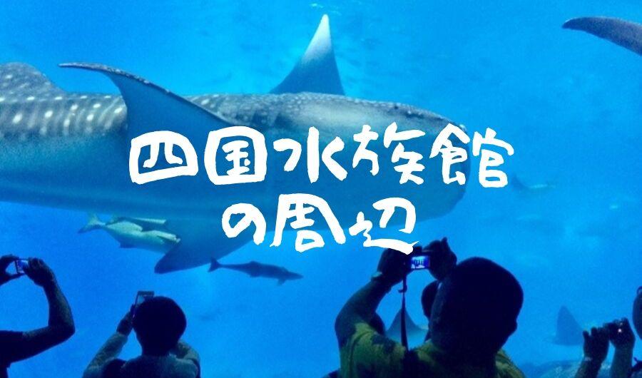 四国水族館デートや旅行に!水族館周辺の観光・ご飯・ホテルを徹底ガイド